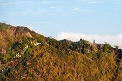 Caldera of volcano Batur Royalty Free Stock Photo