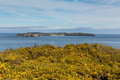 Caldey Island Pembrokeshire Wales Royalty Free Stock Photos