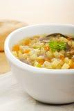 Caldo escocés de la sopa vegetal Imagen de archivo libre de regalías