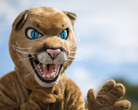 The Caldwell High School cougar mascot Royalty Free Stock Photo
