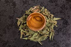Calea zacatechichi leaves and tea. Calea zacatechichi herb and tea on table from above. Lucid dreaming aid royalty free stock images
