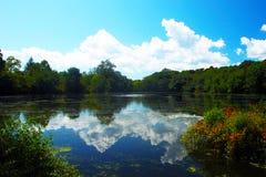 caleb公园状态 免版税库存图片