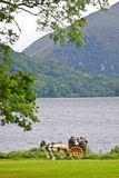 Caleche en el parque de Muckross, Killarney, Irlanda Fotografía de archivo libre de regalías