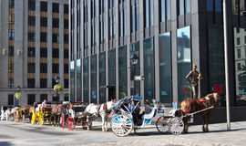 Caleche horse-drawn buggy rides for tourists in Montreal, Canada Royalty Free Stock Images