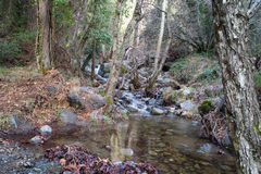 Caledonia waterfall. In Troodos Mountains Stock Images