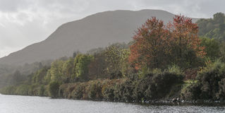 Caledonian Channel. Caledonian canal, near Benavie, Scotland,Autumn colors, clouds and mist Stock Photography