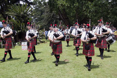 Caledonian Pipe Band Marching and Performing Outdoors Royalty Free Stock Photography