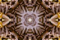 Caleidoscópio com o ornamental bonito da cor Imagem de Stock