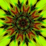 Caleidoscópio da flor Foto de Stock