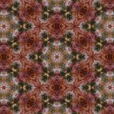 Caleidoscópio do Fractal Imagem de Stock Royalty Free