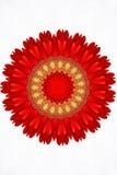 Caleidoscópio floral vermelho Imagens de Stock