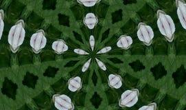 Caleidoscoop Stock Afbeeldingen