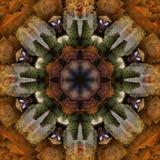 Caleidoscopio Fotografie Stock Libere da Diritti