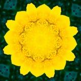 Caleidoscopio de la flor que se asemeja a una mandala Fotos de archivo
