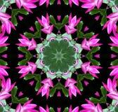 Caleidoscopio rosado de la flor Foto de archivo libre de regalías