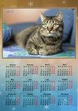 Calendário 2017 Imagens de Stock Royalty Free