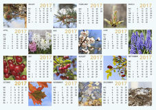 Calendário 2017 com imagens da natureza: contém os meses e os dias o Imagens de Stock