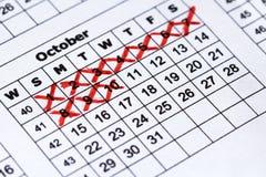 Calendário da gravidez Calendário preciso da vista macro foto de stock