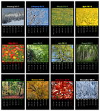 Calendário da natureza para 2014 Imagem de Stock Royalty Free