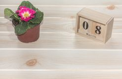 Calendário de madeira do 8 de março, ao lado dos potenciômetros de flor na tabela de madeira Imagem de Stock