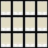 Calendário do espaço em branco 2010 Imagem de Stock Royalty Free