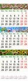 Calendário para abril-junho de 2017 com imagens Fotos de Stock Royalty Free
