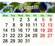 Calendário para agosto de 2016 com ameixas dos ripes Foto de Stock