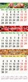 Calendário para agosto-outubro de 2017 com imagens coloridas Fotos de Stock Royalty Free