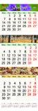 Calendário para agosto-outubro de 2017 com imagens coloridas Fotos de Stock