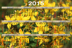 Calendário para 2015 com as flores do wort de St John Fotografia de Stock Royalty Free