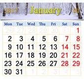 Calendário para janeiro de 2017 com bosque do vidoeiro Imagem de Stock Royalty Free