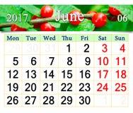 Calendário para junho de 2017 com as bagas vermelhas do tomentosa do Prunus Fotografia de Stock