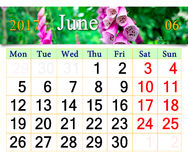 Calendário para junho de 2017 com campainhas lilás Fotografia de Stock
