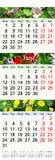 Calendário para maio junho julho de 2017 com imagens Foto de Stock Royalty Free