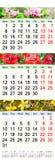 Calendário para maio junho julho de 2017 com imagens Fotografia de Stock Royalty Free