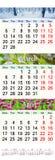 Calendário por fevereiro março e abril de 2017 com imagens da natureza Foto de Stock