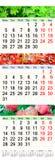 Calendário por junho julho e agosto de 2017 com imagens coloridas Foto de Stock