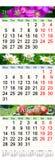 Calendário por junho julho e agosto de 2017 com imagens coloridas Imagens de Stock