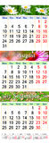 Calendário por junho julho e agosto de 2017 com imagens coloridas Imagem de Stock