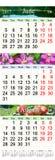 Calendário por junho julho e agosto de 2017 com imagens coloridas Fotos de Stock Royalty Free