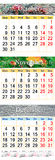 Calendário por outubro novembro e dezembro de 2017 com imagens coloridas Fotografia de Stock
