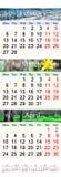 Calendário por três meses de 2017 com imagens da natureza Fotografia de Stock Royalty Free
