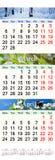 Calendário por três meses de 2017 com imagens da natureza Imagens de Stock Royalty Free