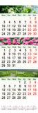 Calendário triplo para April May e junho de 2017 com imagens Imagens de Stock Royalty Free