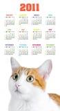 Calendário vertical da cor por 2011 anos Fotografia de Stock
