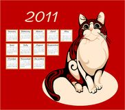 Calendar 2011 with  cat. Calendar 2011 with tabby cat Royalty Free Stock Photo