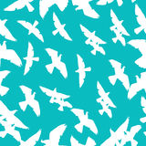Blue sky with pigeons pattern Royalty Free Stock Images