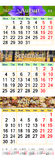 Calendar for August - October 2017 with colored pictures. Office calendar for three months August September and October 2017 with images of autumnal park amd Stock Photos