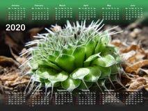 Calendar for 2020. vector illustration