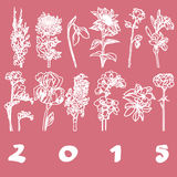 Calendar cover 2015 flowers. Calendar 2015 cover with hand drawn flowers illustrations for each month, pink stencil over white vector illustration